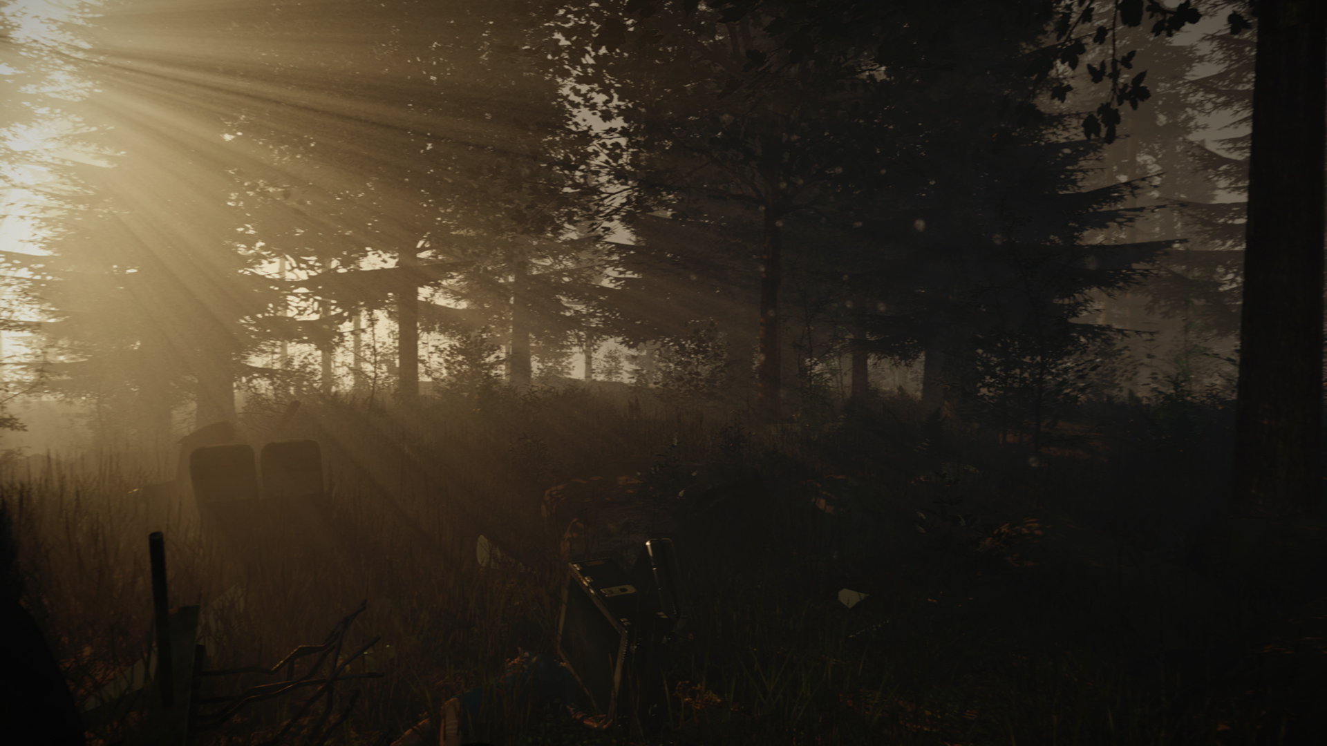 theforest1